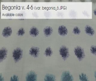Begonia v. 4-6