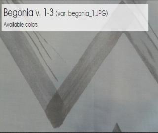 Begonia v. 1-3